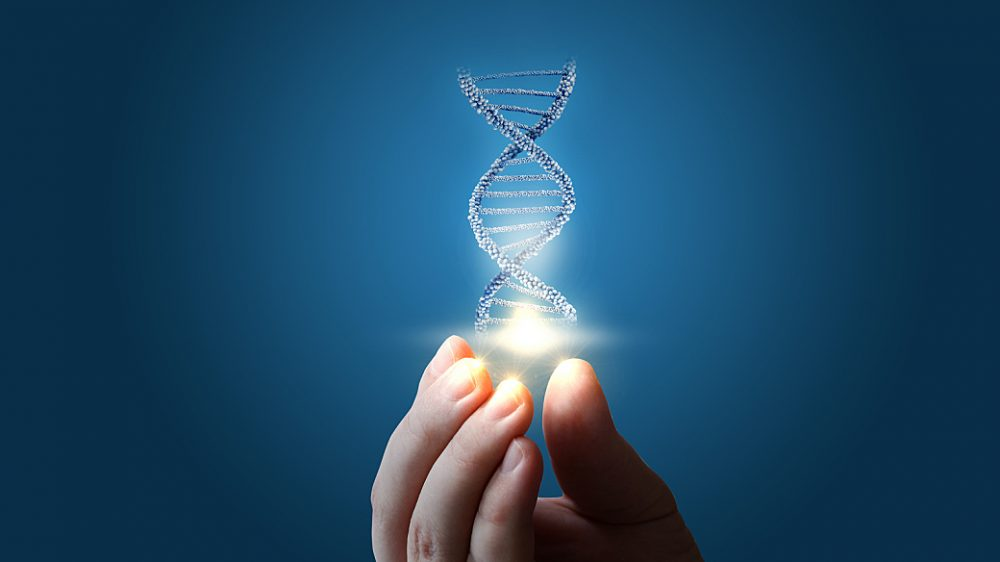 Dna In Hand On Blue Background.