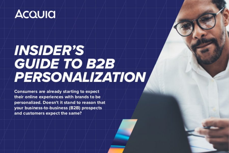 New on the portfolio: The Insider's Guide to B2B Personalization