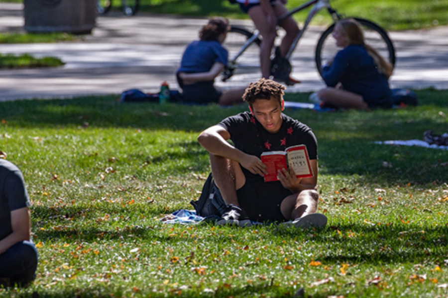 New on the portfolio: How the University of Illinois supports students during (and beyond) campus shutdowns